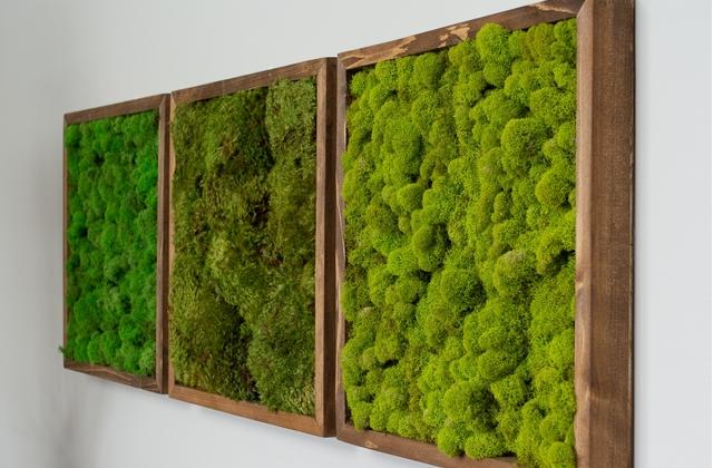 Fresque Végétale Beaujolais